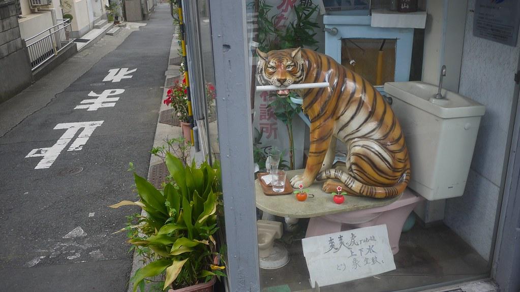 Tiger on Toilet