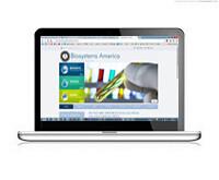 Web Design Consulting