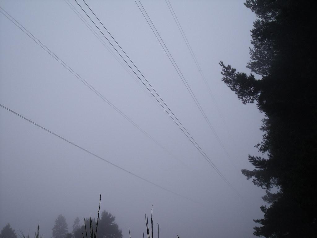 Pylons at Dronley Wood
