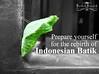 Bathik Brintik Cocoon