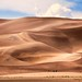 Great Sand Dunes National Park by Nancy Rose