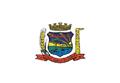Bandeira da cidade Araucária