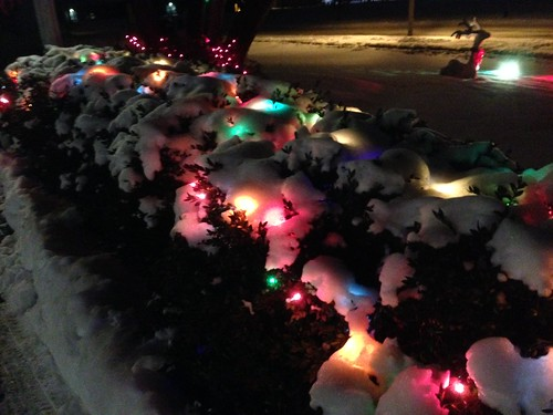 Christmas Lights in the Snow