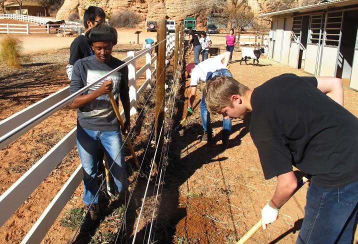 Žiaci Verde Valley School vykopávajú burinu z ohrád