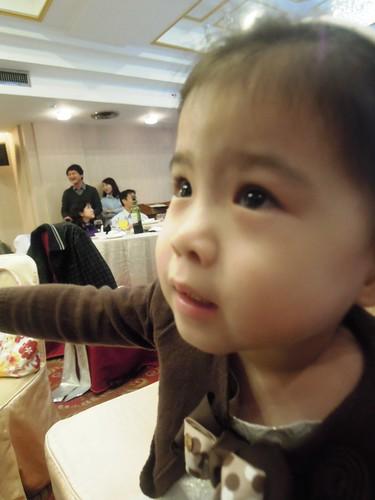小櫻也想爬上餐桌