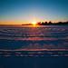 Snow Ripples by Matt Molloy