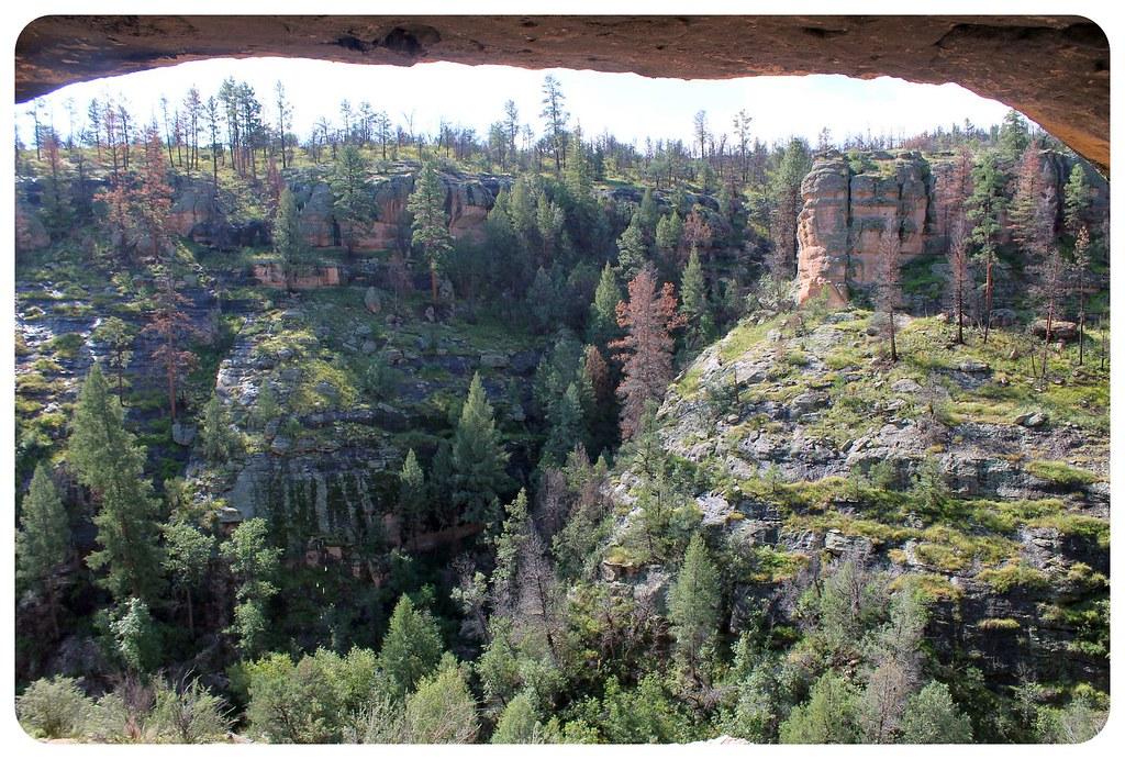gila cliff dwellings view