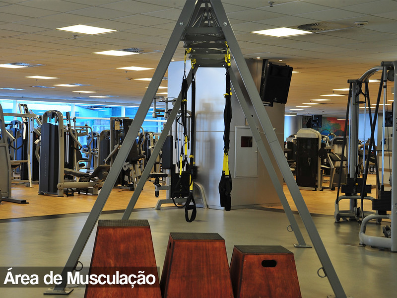 musculacao