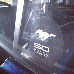 50 years decal. #Mustang #50years #66 1966 #ford #Stang #vintagemustang #classicmustang @led_fut