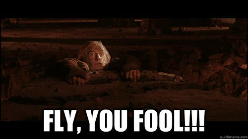Gandalf: FLY YOU FOOLS
