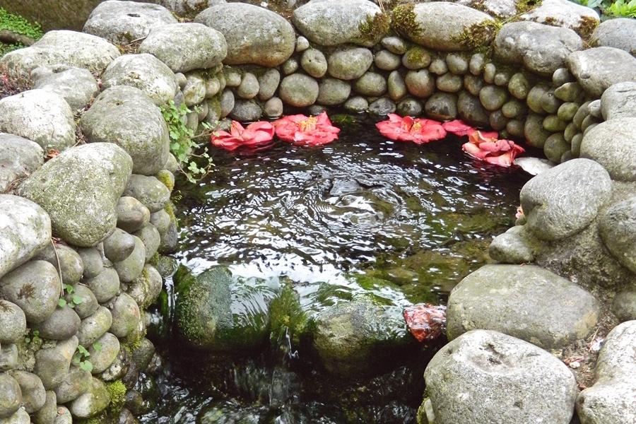 Jardin japonais Albert Kahn (2)