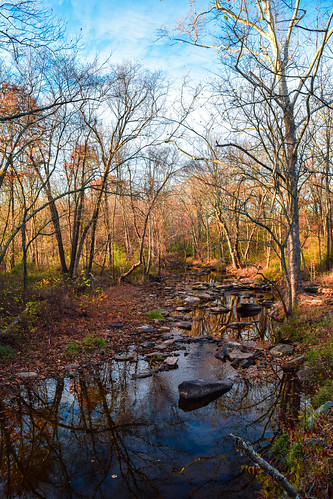 poolesville maryland usa northamerica drysenecacreek unitedstates us creek forest