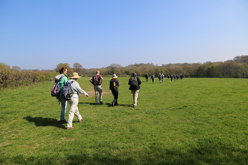 Saturday Walkers spreading out