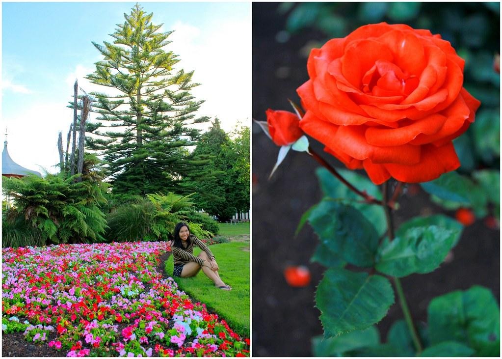 rotorua-government-garden-new-zealand