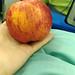 蘋果(小試身手)