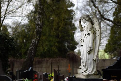 angel grave graveyard cemetery starycmentarzwłodzi theoldcemeteryinłódź łódź lodz polska poland