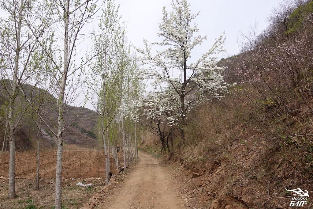 北京金山嶺長城馬拉松-068