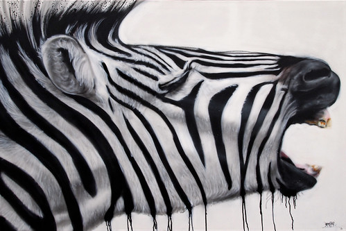Zebraaaa by 'gnasher'