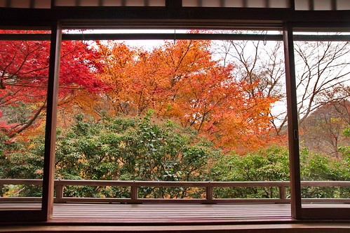 【写真】紅葉 : 瑠璃光院