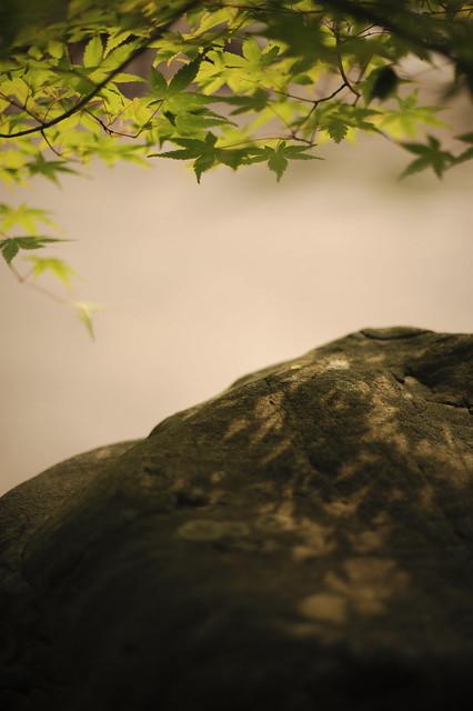 小岩の影絵遊び