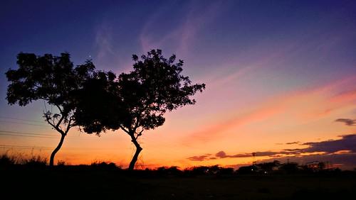 sunset lowlight chennai soe 920 padappai