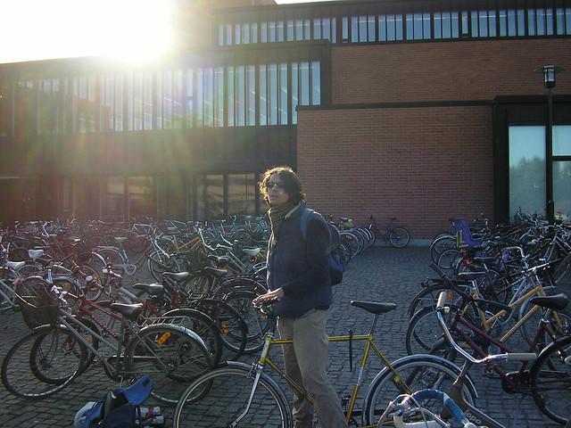 Bicicletas en la universidad