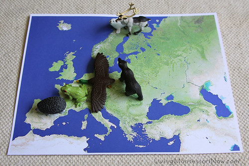 Animals on Satellite Map of Europe