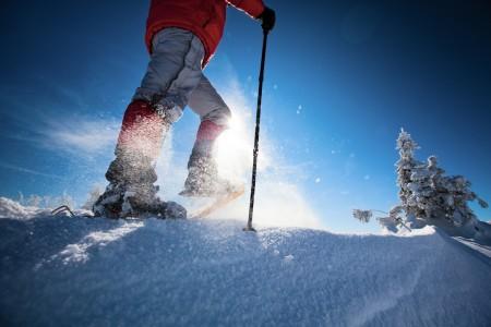 Netradiční zimní sport - sněžnice