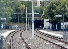 Sydney Light Rail - Towards Glebe and Glebe tunnel