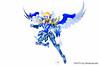 [Imagens] Saint Cloth Myth - Hyoga de Cisne Kamui 10th Anniversary Edition 11008995666_21a48e3918_t