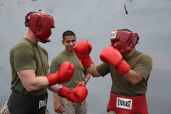 striking combat sports, contact sport, sports, red, muscle, kickboxing, sanshou, strike, amateur boxing, boxing,