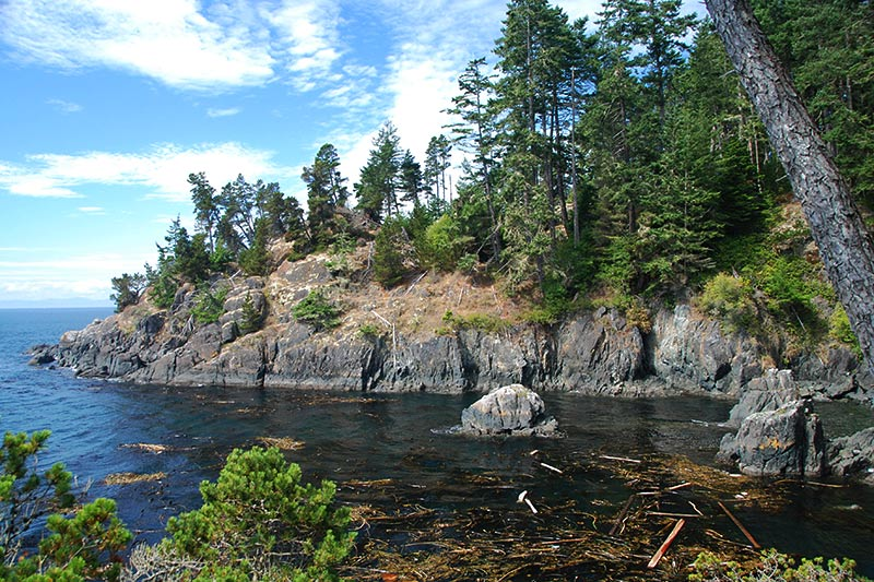 East Sooke Park, Sooke, Victoria, Vancouver Island, British Columbia, Canada
