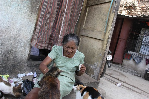 Cat Lady of Bandra Shot by Nerjis Asif Shakir 2 year old by firoze shakir photographerno1