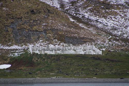 378 Kerkhof Shackleton