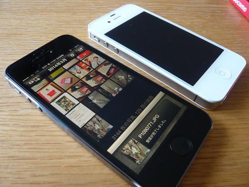 カメラロール-3269