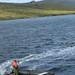 Zodiac Landscape Perseverance Harbour Campbell Island Subantarctic New Zealand UNESCO World Heritage Status Nature Reserve