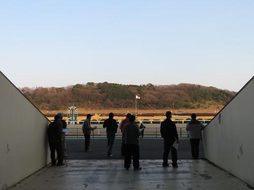 佐賀競馬場のレース前の様子