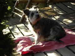 notre soeur Nina - Photo of Rocourt
