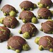 Nutella stuffed Matcha milk bread turtles with chocolate Dutch crunch by honey drizzle