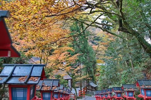 【写真】2012 紅葉 : 貴船神社/2019-02-06/IMGP5930