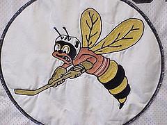 Buzz Yellowjacket, 1970s, UW-Superior, hockey