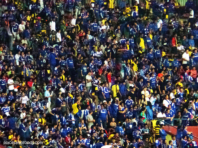 chelsea 2013 fans