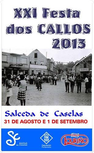 Salceda de Caselas 2013 - Festa dos Callos - cartel