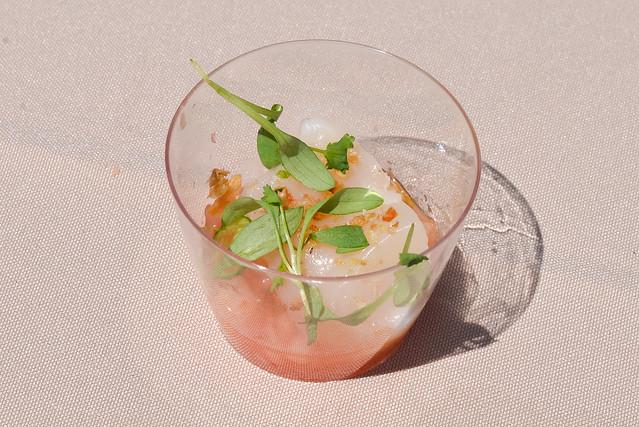 Hamasaku hokkaido scallop with yuzu-apple ceviche