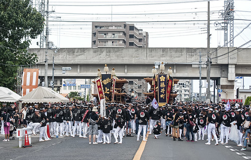 Kishiwada Danjiri Matsuri 岸和田だんじり祭 42
