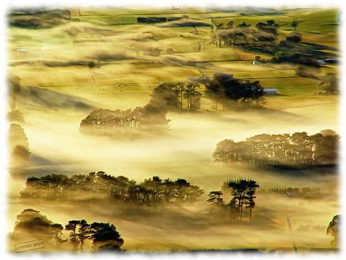 newzealand weather fog sunrise landscape spring fuji seasons farming gimp pastoral wairarapa carterton 2013 xs1 fujifilmxs1