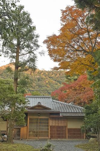 【写真】2013 紅葉 : 白沙村荘/2020-12-28/IMGP3708