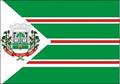 Bandeira da cidade de Toledo