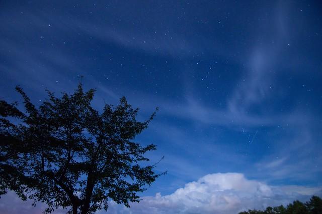 写真_夜空に逢いたくて