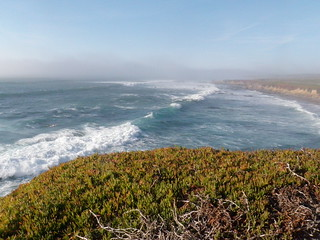 Pigeon Point 122313-79